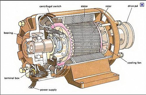 Electric%20motor%20contruction_AC_real.jpg?m=1318883558